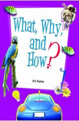 What Why and How 1 - Asli Kaplan